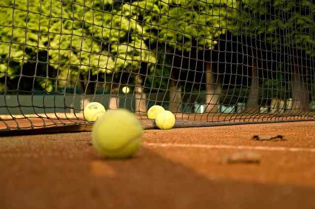 Прогнозы на теннис от экспертов на сегодня